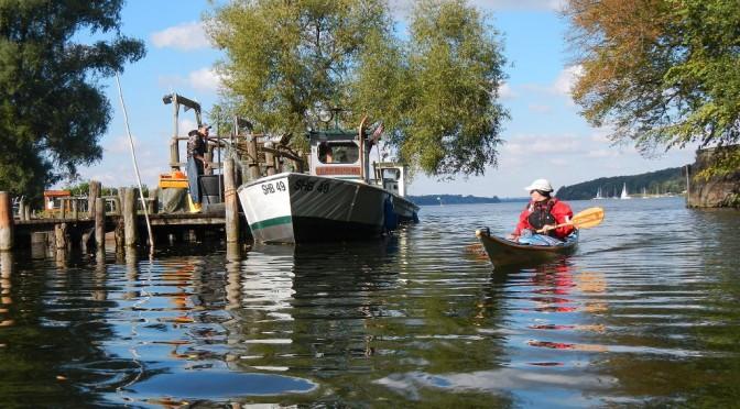 Amazonas des Nordens | Wakenitz und Ratzeburger See