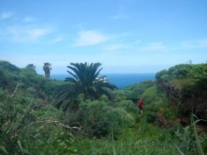 bei San Juan de la Rambla
